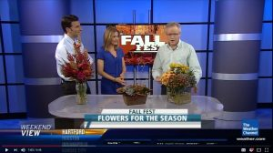 Cut Flower Wholesale on The Weather Channel - Fall 2012