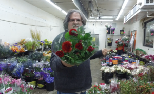 Cut Flower weekly product update January 11, 2018