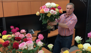 Exceptional rose varieties received this week from our friends at De Ruiter in Ecuador