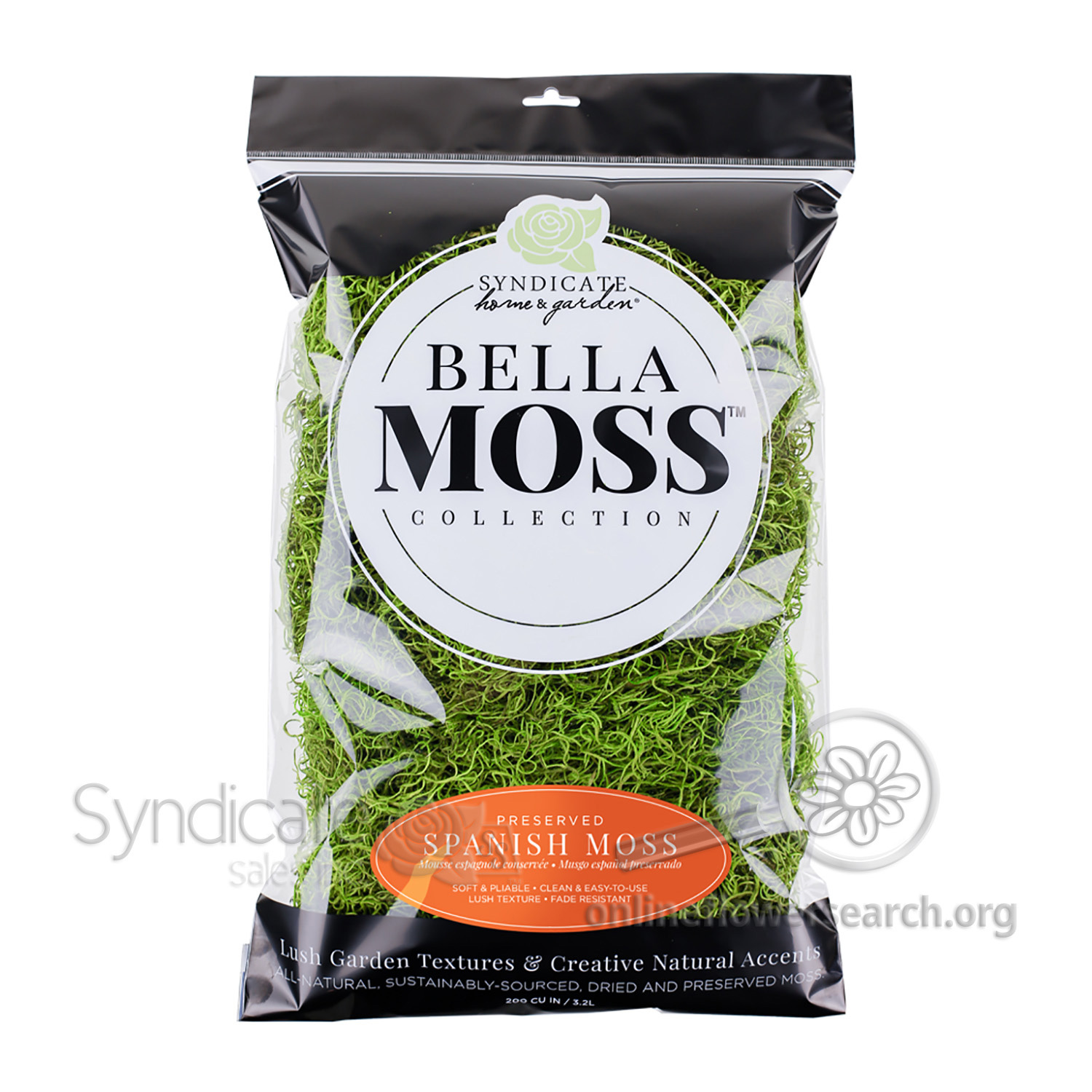 Spanish Decorative Moss 250 cu in Musgo Espanol Interior Plants