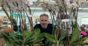 Cut Flower product update June 4, 2020