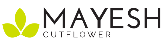 Mayesh Cutflower